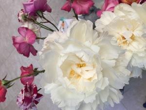 Nana's roses