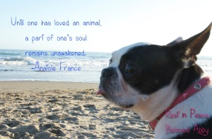 Abby RIP with Anatole France quote