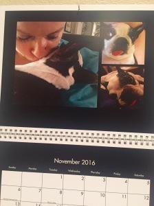 My Abby calendar