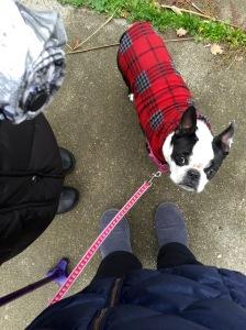 Walking between raindrops