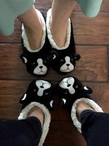 Boston Terrier slippers