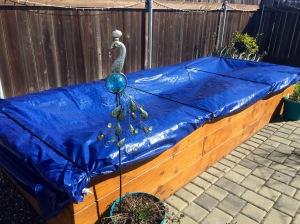 Tarp covered garden box