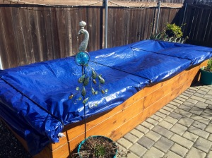 Tarp covered garden box